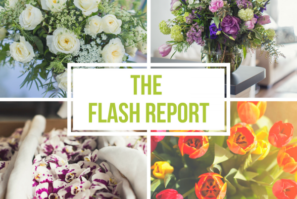 Flash Report