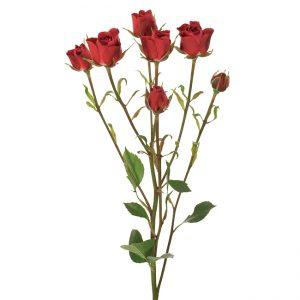 Roses Spray Novelties Sicilia