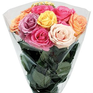 Bouquet Rose Dozen Rainbow Queens