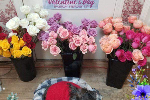 Fashionable Flower Boutique