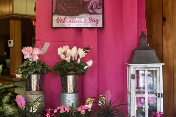 Gilmores Flower Shop