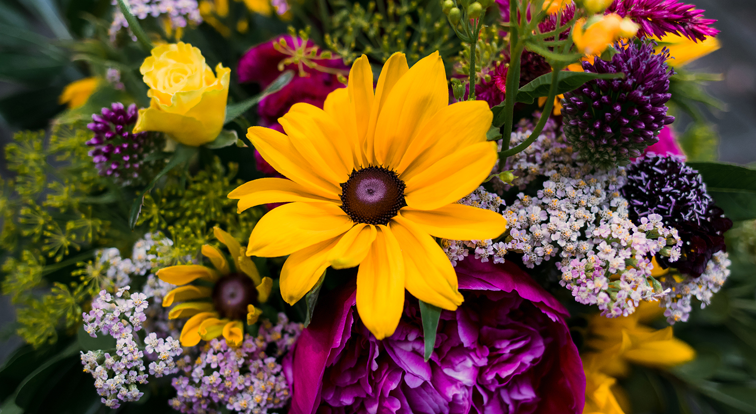 Spotlight On American Grown Flowers Month!