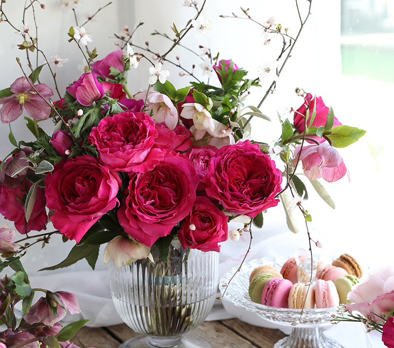 David Austin Valentine's Roses